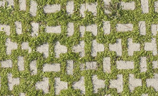 Texture archives 3dita digital visual studio3dita - Pavimentazione giardino autobloccanti ...