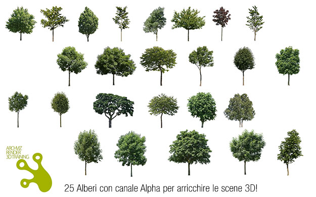 25 alberi 2d con canale alpha gratis3dita digital visual for Rendering gratis