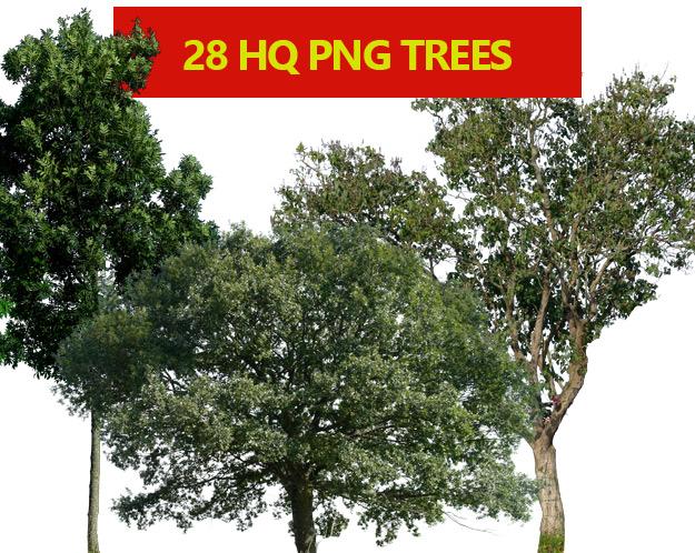 28 FREE HQ trees